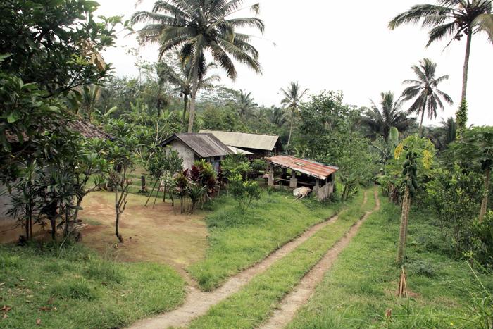 Desa Amerta Nadi
